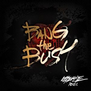 "Album art for 100%'s album ""Bang The Bush"""