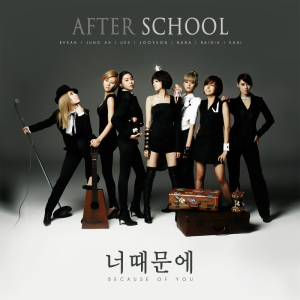"The album art for After School's album ""Becausde Of You"""