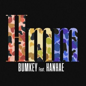 "Album art for Bumkey's album ""Hmm"""