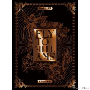 "Album art for Fly To The Sky's album ""Continuum"""