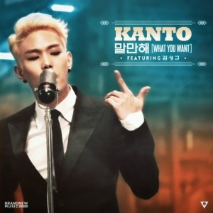 "Album art for Kanto's album ""What You Want"""