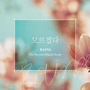 "Album art for Raina's album ""I Don't Know"""