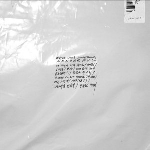 "Album art for EPIK HIGH's album ""We've Done Something Wonderful"""