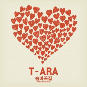 "Album art for T-Ara's album ""White Winter"""