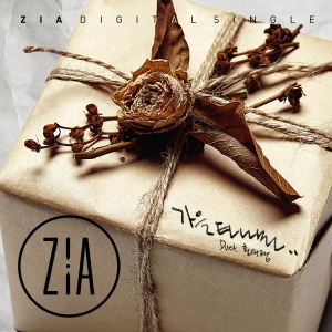 "Album art for Zia's album ""Nostalgic Autumn"""