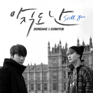"Album art for Donghae & Eunhyuk's album ""Still You"""