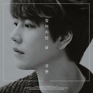 "Album art Kyuhyun (Super Junior)'s album ""The Day We Felt The Distance"""