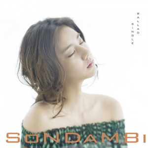 "Album art for Son Dambi's album ""Invisible Person"""