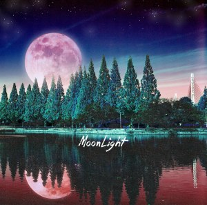 "Album art for BaeChiGi's album ""MoonLight"""