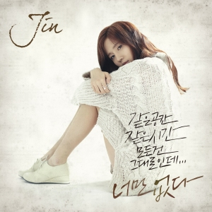 "Album art for Jin's Album ""Gone"""