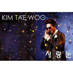 "Album art for Kim Taewoo from g.o.d's album ""Love Snow"""