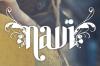 Navi's logo.