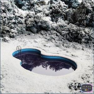 """Album art for Suran's album """"Winter Bird"""""""