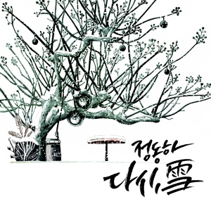 "Album art for Jung Dong Ha's album ""Snow Again"""
