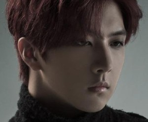 "MBLAQ's Cheondong ""Winter"" promotional picture."