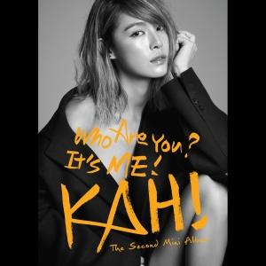 """Album art for Kahi's album """"Who Are You"""""""