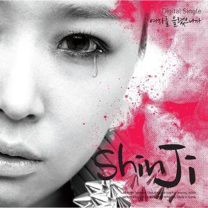 "Album art for Sin.G's album ""Because A Woman Cries"""