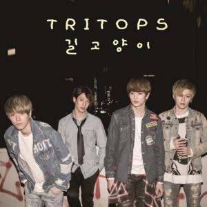 """Album art for for Tritops's album """"Street Cat"""""""