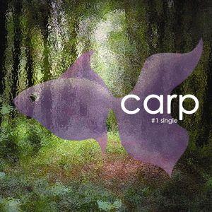 """album art for Yoojun's album """"Carp"""""""
