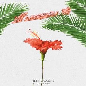 """Album art for Dok2's album """"1ll Recognize 1ll"""""""