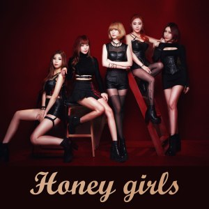 "Album art for Honey Girl's album ""Again"""