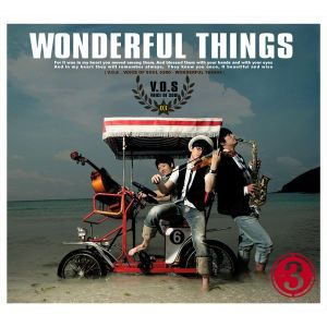 "Album art for V.O.S's allbum ""Wonderful Thing"""