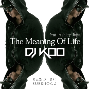 "Album art for DJ KOO's album ""Meaning Of Life: Subshock Remix"""