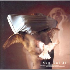 "Album art for Seo Taiji's album ""Seo Taiji"""