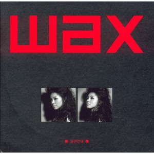 "Album art for Wax's album ""Don't Cry"""