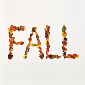 "Album art for Crucial Star's album ""Fall"""