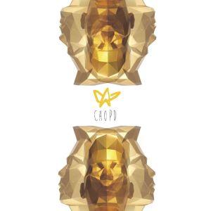 """Album art for Zo PD (Cho PD)'s  album """"In Stardom 3.0)"""
