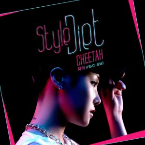 """Album art for Cheetah's album """"Style Diet"""""""