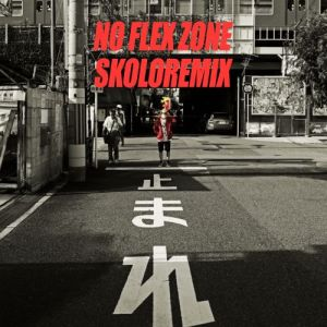 "Album art for Skolor's album ""NFZ (No Flex Zone)"""