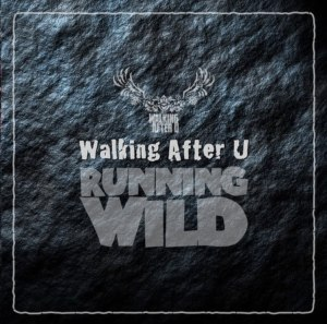 "Album art for Walking After U's album ""Running Wild"""