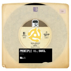 "Album art for Naul's album ""Principle Of My Soul"""