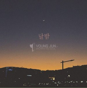 "Album art for Young Jun (Brown Eyed Soul)'s album ""Moon Night"""