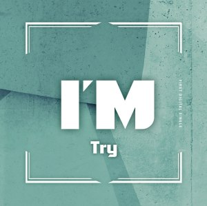 "Album art for I'M's album ""Try"""