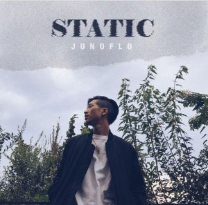 "album art for Junoflo's album ""Static"""