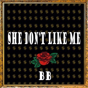 "Album art for BB's album ""She Don't Like Me"""