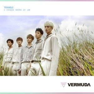 """Album art for Vermuda's album """"Triangle"""""""