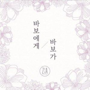 "Album art for Zia's album ""Dear My Fool"""