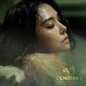 """Album art for Cheetah's album """"Stagger"""""""