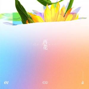 """Album art for EXID's album """"Re:flower - PROJECT #1"""""""