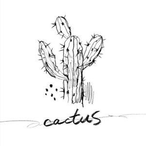 """Album art for Ns album """"Cactus"""""""
